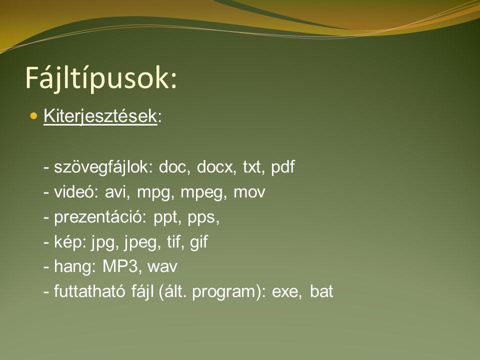 Fájltípusok: Kiterjesztések : - szövegfájlok: doc, docx, txt, pdf - videó: avi, mpg, mpeg, mov - prezentáció: ppt, pps, - kép: jpg, jpeg, tif, gif - hang: MP3, wav - futtatható fájl (ált.