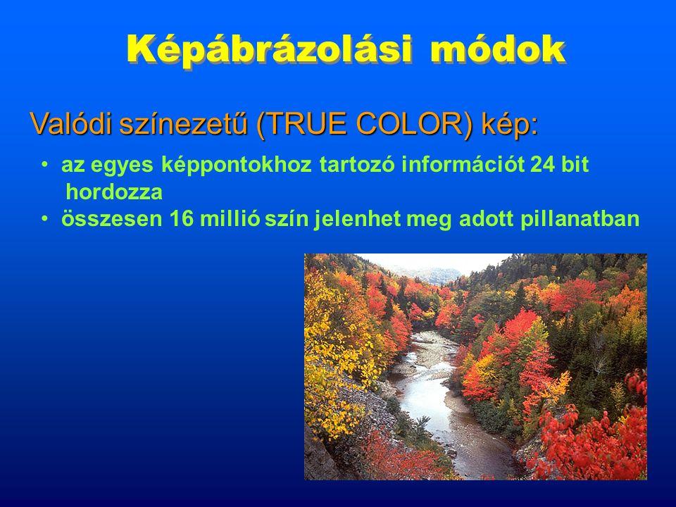 8 Képábrázolási módok 256 szín jeleníthető meg egyszerre Színpalettás kép: