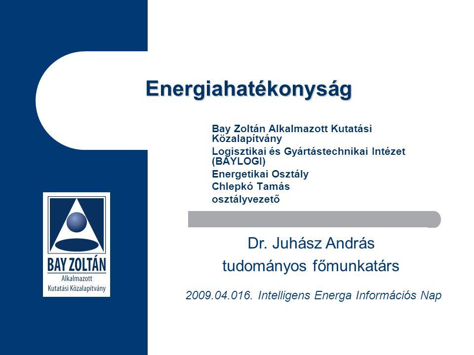 Energiahatékonyság Bay Zoltán Alkalmazott Kutatási Közalapítvány Logisztikai és Gyártástechnikai Intézet (BAYLOGI) Energetikai Osztály Chlepkó Tamás osztályvezető Dr.