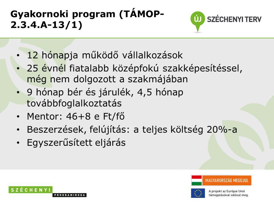 Gyakornoki program (TÁMOP- 2.3.4.A-13/1) 12 hónapja működő vállalkozások 25 évnél fiatalabb középfokú szakképesítéssel, még nem dolgozott a szakmájába