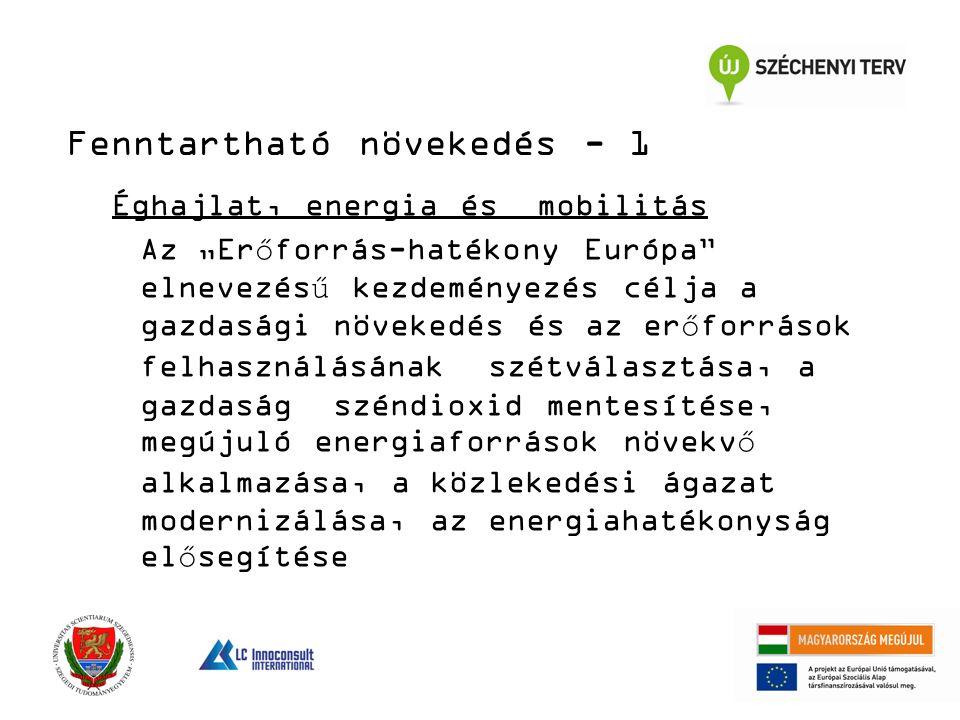 """Éghajlat, energia és mobilitás Az """"Erőforrás-hatékony Európa elnevezésű kezdeményezés célja a gazdasági növekedés és az erőforrások felhasználásának szétválasztása, a gazdaság széndioxid mentesítése, megújuló energiaforrások növekvő alkalmazása, a közlekedési ágazat modernizálása, az energiahatékonyság elősegítése Fenntartható növekedés - 1"""