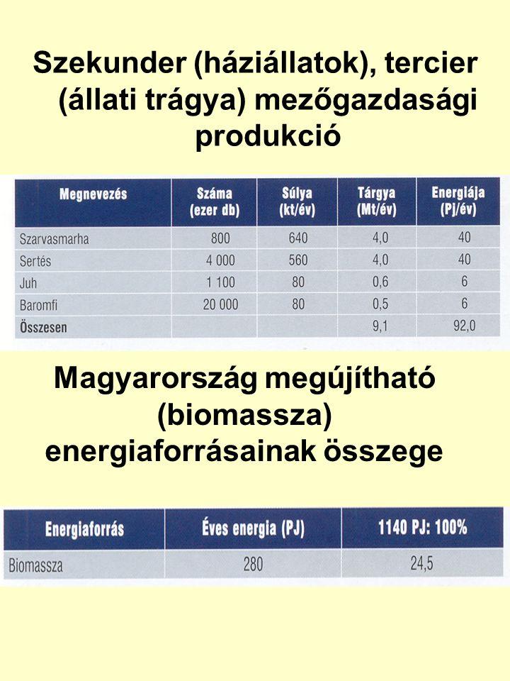 Szekunder (háziállatok), tercier (állati trágya) mezőgazdasági produkció Magyarország megújítható (biomassza) energiaforrásainak összege