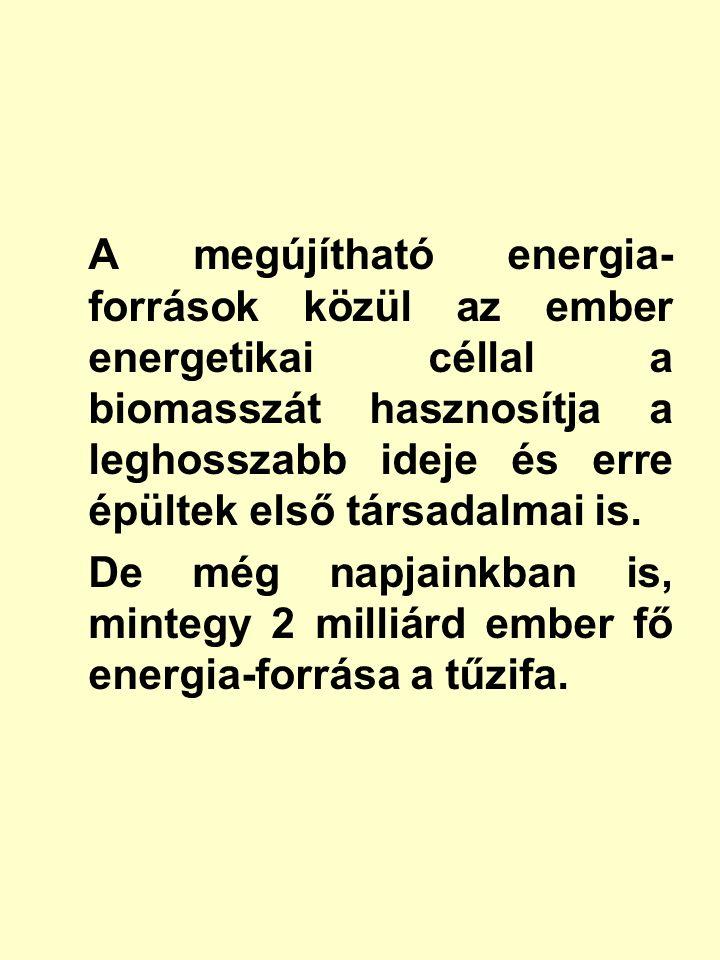 A biomassza energetikai átalakításának célja és módja - A biomassza energetikai átalakításának célja: közvetlenül hasznosítható energiahordozó nyerése.