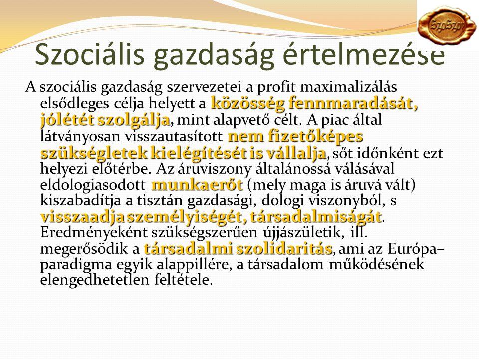 Szociális gazdaság értelmezése közösség fennmaradását, jólétét szolgálja nem fizetőképes szükségletek kielégítését is vállalja munkaerőt visszaadja személyiségét, társadalmiságát társadalmi szolidaritás A szociális gazdaság szervezetei a profit maximalizálás elsődleges célja helyett a közösség fennmaradását, jólétét szolgálja, mint alapvető célt.
