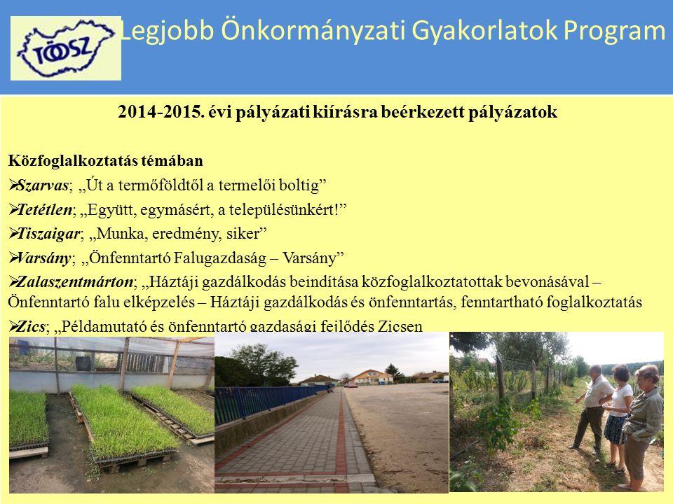 """Legjobb Önkormányzati Gyakorlatok Program 2014-2015. évi pályázati kiírásra beérkezett pályázatok Közfoglalkoztatás témában  Karakószörcsök; """" Gyöngy"""