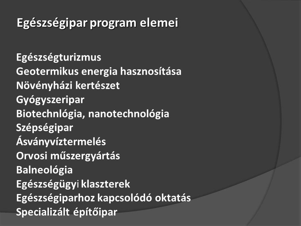 Egészségipar program elemei Egészségturizmus Geotermikus energia hasznosítása Növényházi kertészet Gyógyszeripar Biotechnlógia, nanotechnológia Szépségipar Ásványvíztermelés Orvosi műszergyártás Balneológia Egészségügyi klaszterek Egészségiparhoz kapcsolódó oktatás Specializált építőipar