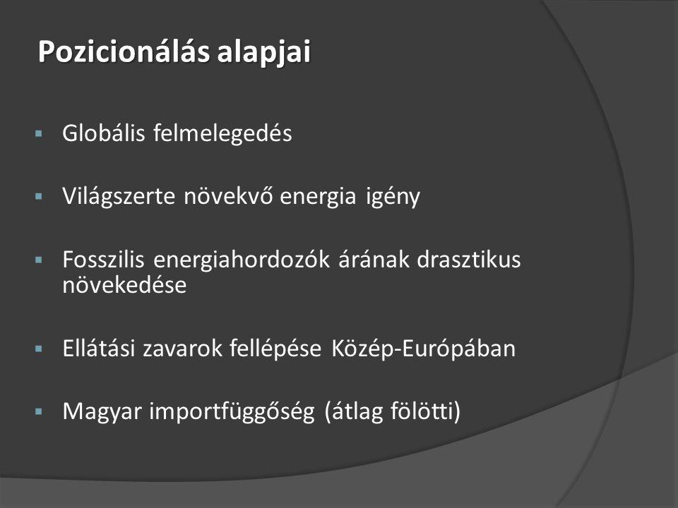 Pozicionálás alapjai  Globális felmelegedés  Világszerte növekvő energia igény  Fosszilis energiahordozók árának drasztikus növekedése  Ellátási zavarok fellépése Közép-Európában  Magyar importfüggőség (átlag fölötti)