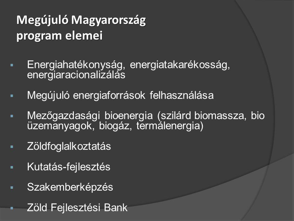 Megújuló Magyarország program elemei  Energiahatékonyság, energiatakarékosság, energiaracionalizálás  Megújuló energiaforrások felhasználása  Mezőgazdasági bioenergia (szilárd biomassza, bio üzemanyagok, biogáz, termálenergia)  Zöldfoglalkoztatás  Kutatás-fejlesztés  Szakemberképzés  Zöld Fejlesztési Bank