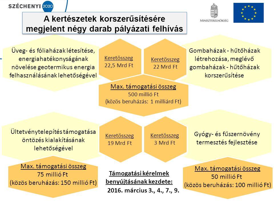 A kertészetek korszerűsítésére megjelent négy darab pályázati felhívás Keretösszeg 22,5 Mrd Ft Üveg- és fóliaházak létesítése, energiahatékonyságának növelése geotermikus energia felhasználásának lehetőségével Gombaházak - hűtőházak létrehozása, meglévő gombaházak - hűtőházak korszerűsítése Keretösszeg 22 Mrd Ft Ültetvénytelepítés támogatása öntözés kialakításának lehetőségével Gyógy- és fűszernövény termesztés fejlesztése Támogatási kérelmek benyújtásának kezdete: 2016.
