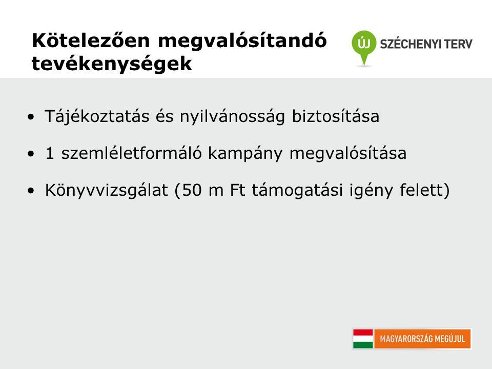 Kötelezően megvalósítandó tevékenységek Tájékoztatás és nyilvánosság biztosítása 1 szemléletformáló kampány megvalósítása Könyvvizsgálat (50 m Ft támogatási igény felett)