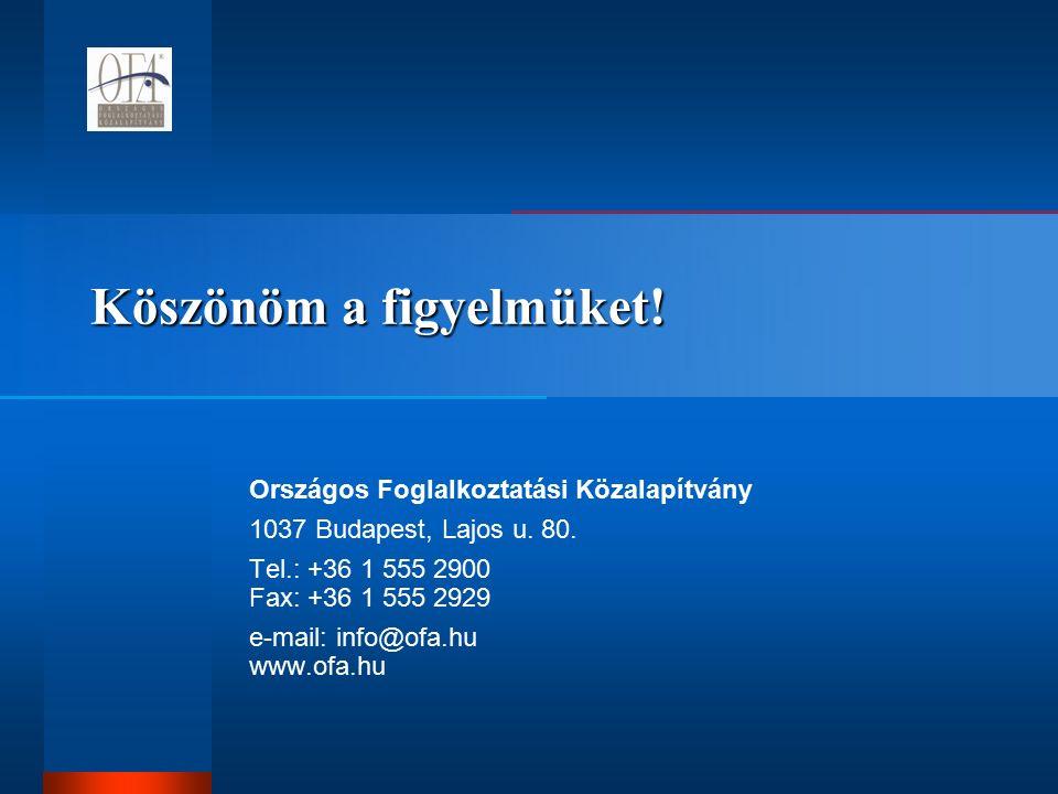 Köszönöm a figyelmüket. Országos Foglalkoztatási Közalapítvány 1037 Budapest, Lajos u.