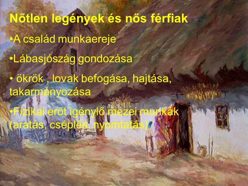 Nőtlen legények és nős férfiak A család munkaereje Lábasjószág gondozása ökrök, lovak befogása, hajtása, takarmányozása Fizikai erőt igénylő mezei mun
