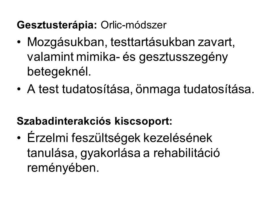 Gesztusterápia: Orlic-módszer Mozgásukban, testtartásukban zavart, valamint mimika- és gesztusszegény betegeknél.