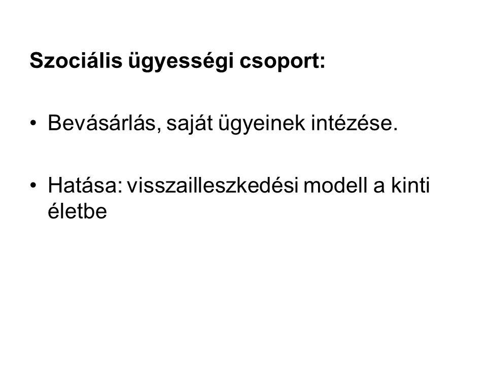 Szociális ügyességi csoport: Bevásárlás, saját ügyeinek intézése.