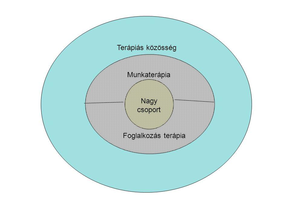 Terápiás közösség Munkaterápia Foglalkozás terápia Nagy csoport