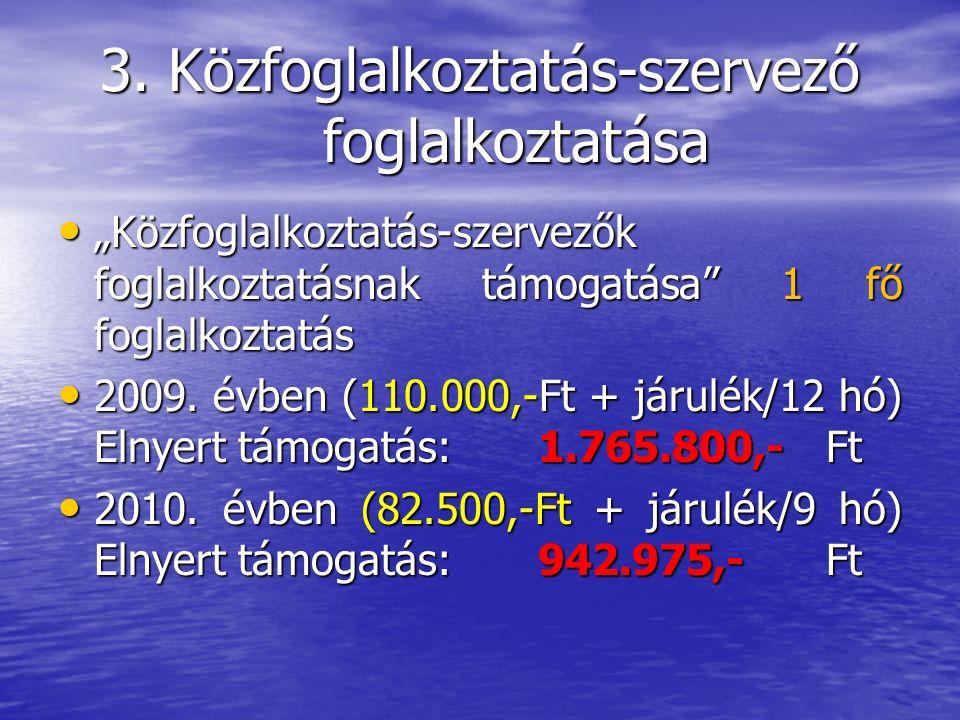 10.Egészséges ivóvíz Tatárszentgyörgyön Az EU által, a 201/2001.