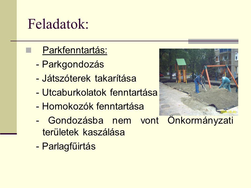 Feladatok: Parkfenntartás: - Parkgondozás - Játszóterek takarítása - Utcaburkolatok fenntartása - Homokozók fenntartása - Gondozásba nem vont Önkormányzati területek kaszálása - Parlagfűirtás