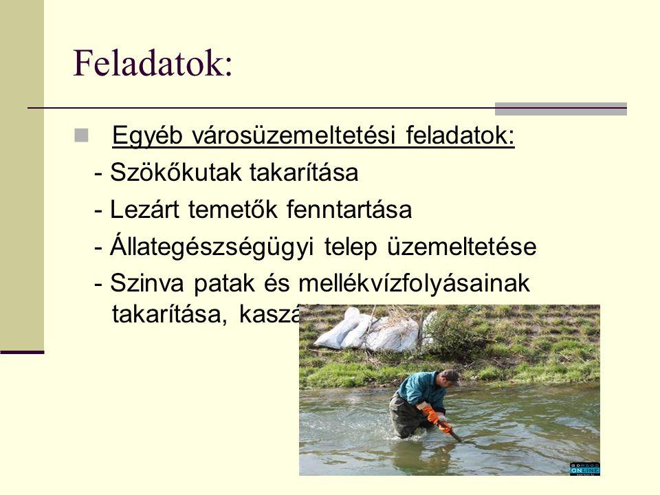 Feladatok: Egyéb városüzemeltetési feladatok: - Szökőkutak takarítása - Lezárt temetők fenntartása - Állategészségügyi telep üzemeltetése - Szinva patak és mellékvízfolyásainak takarítása, kaszálása