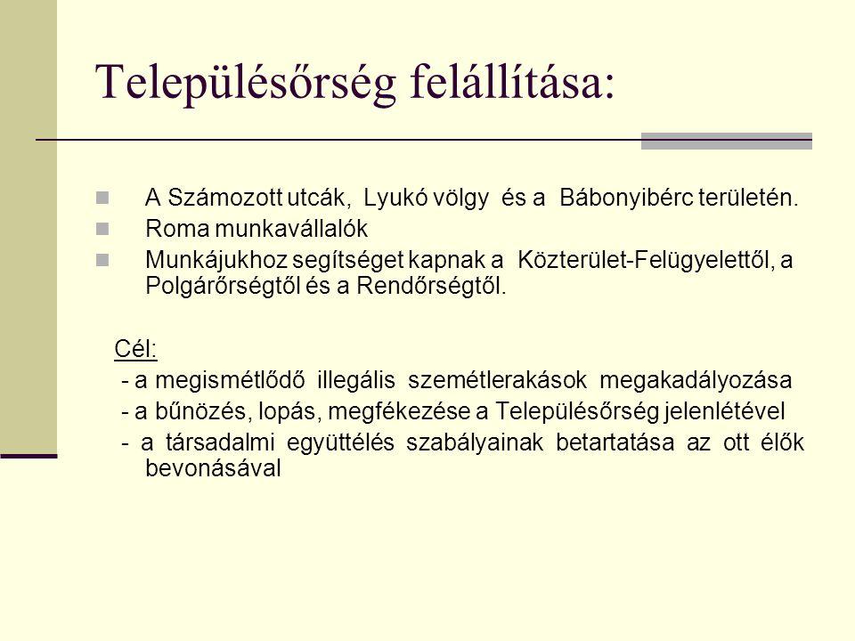 Településőrség felállítása: A Számozott utcák, Lyukó völgy és a Bábonyibérc területén.
