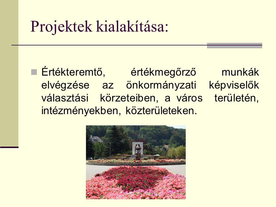 Projektek kialakítása: Értékteremtő, értékmegőrző munkák elvégzése az önkormányzati képviselők választási körzeteiben, a város területén, intézményekb