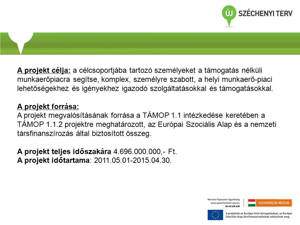 Fontos információk: TÁMOP-1.1.2-11/1 programba kizárólag a célcsoportok valamelyikének megfelelő, regisztrált álláskereső vonható be.