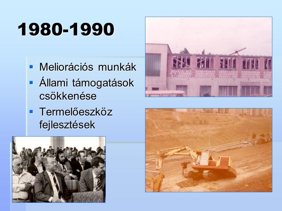 1980-1990  Meliorációs munkák  Állami támogatások csökkenése  Termelőeszköz fejlesztések