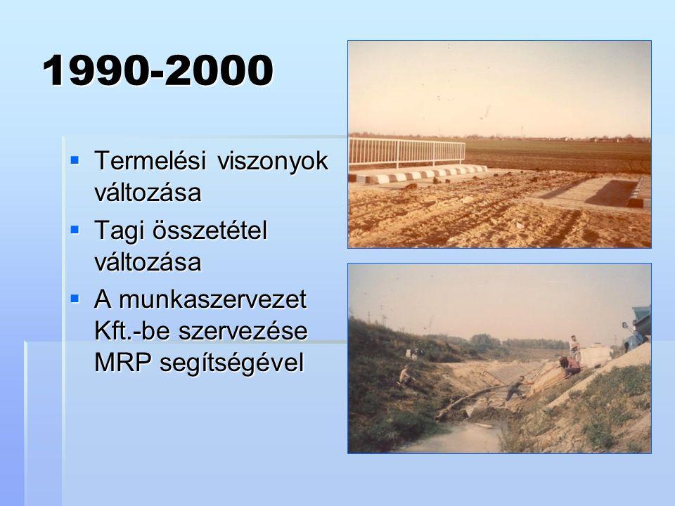 1990-2000  Termelési viszonyok változása  Tagi összetétel változása  A munkaszervezet Kft.-be szervezése MRP segítségével