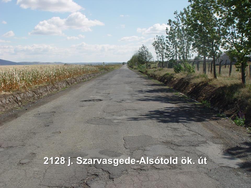 2128 j. Szarvasgede-Alsótold ök. út
