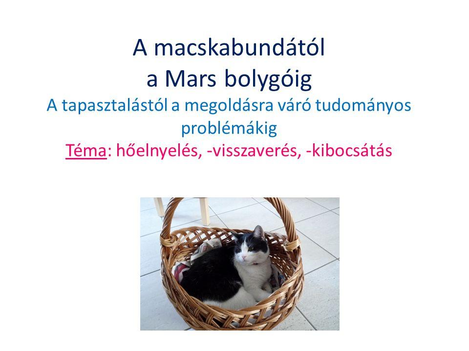 A macskabundától a Mars bolygóig A tapasztalástól a megoldásra váró tudományos problémákig Téma: hőelnyelés, -visszaverés, -kibocsátás