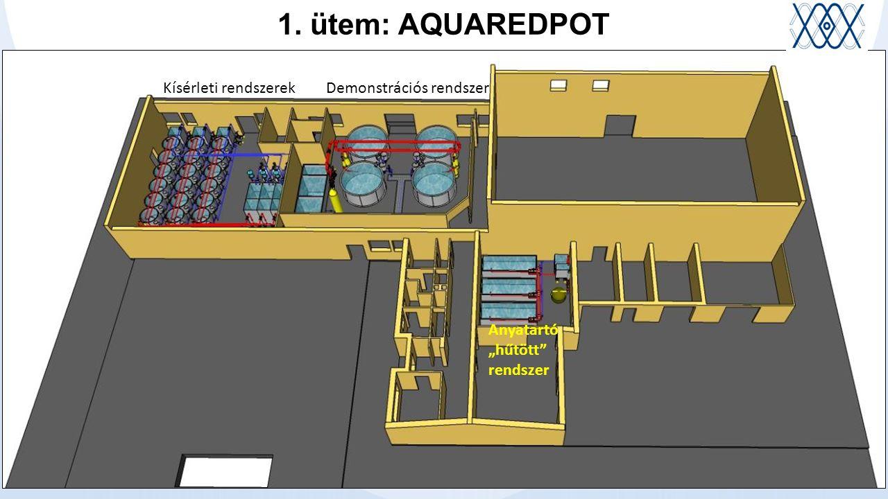 """1. ütem: AQUAREDPOT Kísérleti rendszerekDemonstrációs rendszer Anyatartó """"hűtött rendszer"""