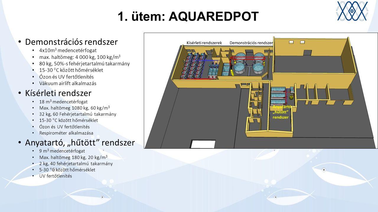 1. ütem: AQUAREDPOT Demonstrációs rendszer 4x10m 3 medencetérfogat max.
