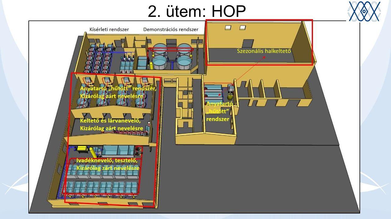 2. ütem: HOP