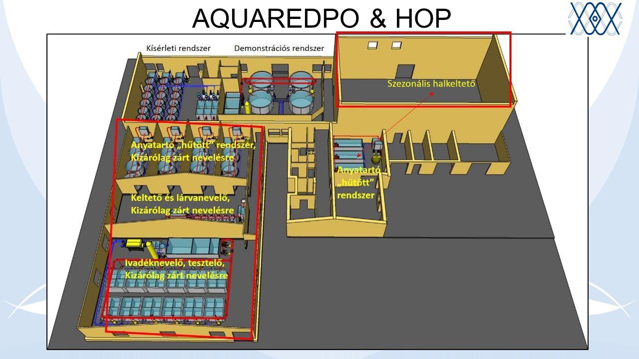 AQUAREDPO & HOP
