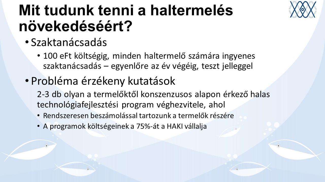 Az új infrastruktúra beruházások szerepe a HAKI megújulásában 1.