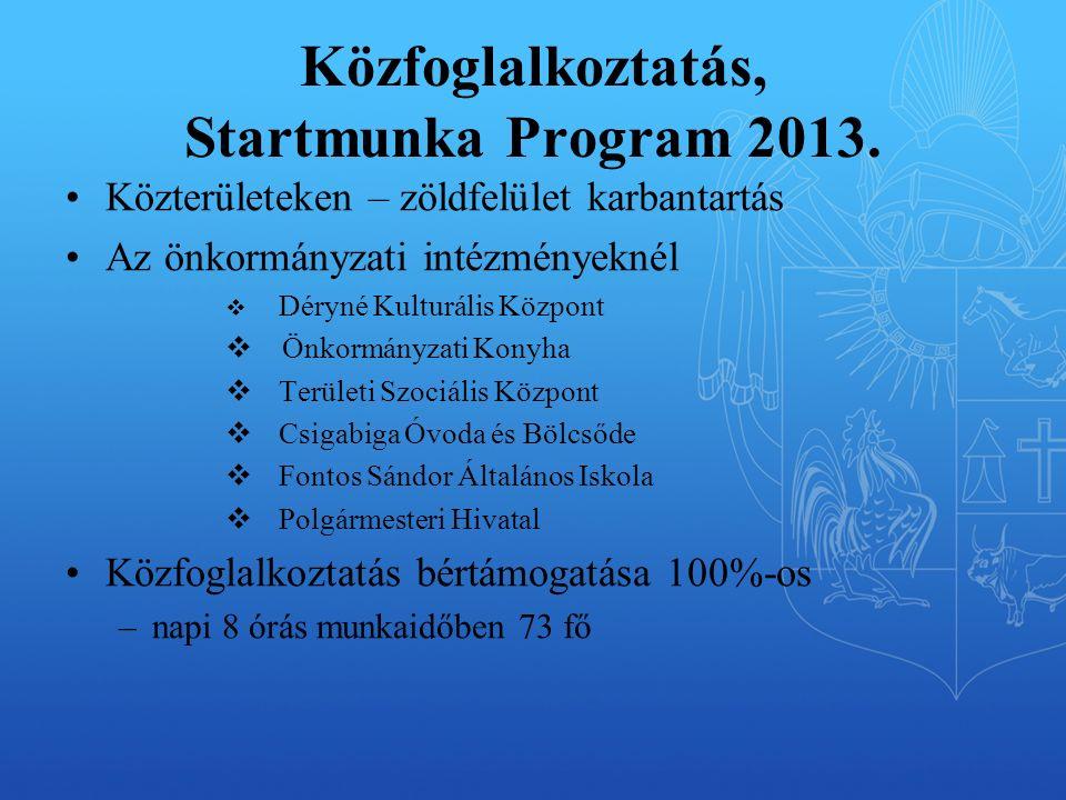 Közfoglalkoztatás, Startmunka Program 2013.