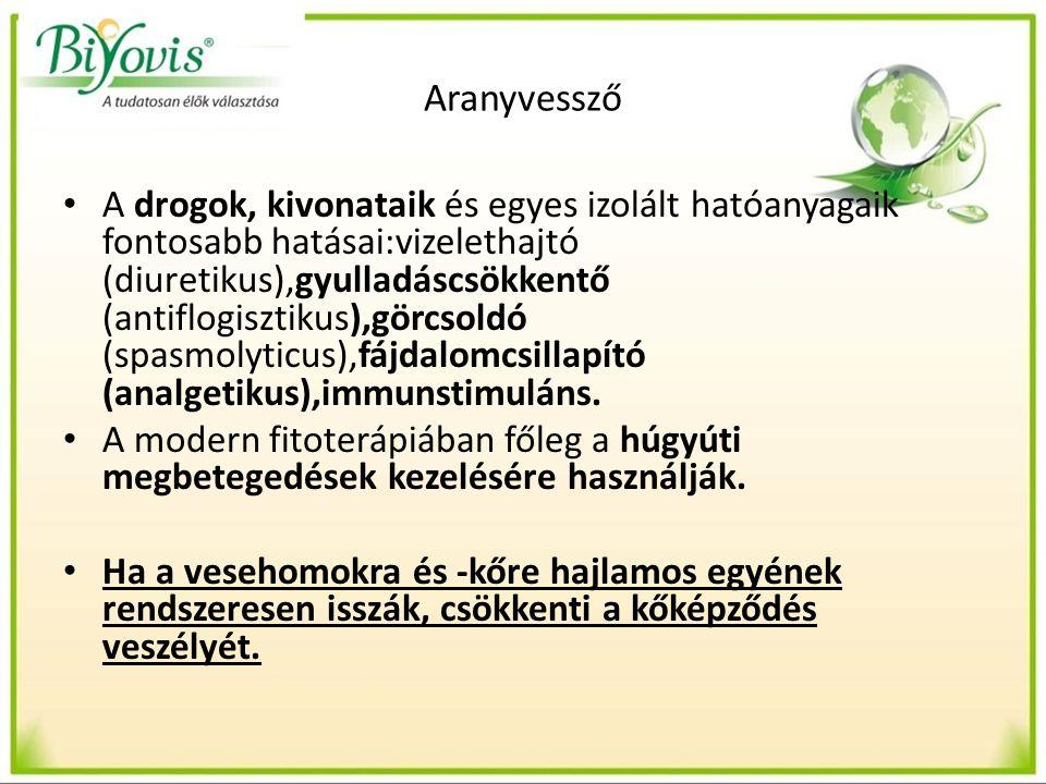 Aranyvessző A drogok, kivonataik és egyes izolált hatóanyagaik fontosabb hatásai:vizelethajtó (diuretikus),gyulladáscsökkentő (antiflogisztikus),görcsoldó (spasmolyticus),fájdalomcsillapító (analgetikus),immunstimuláns.