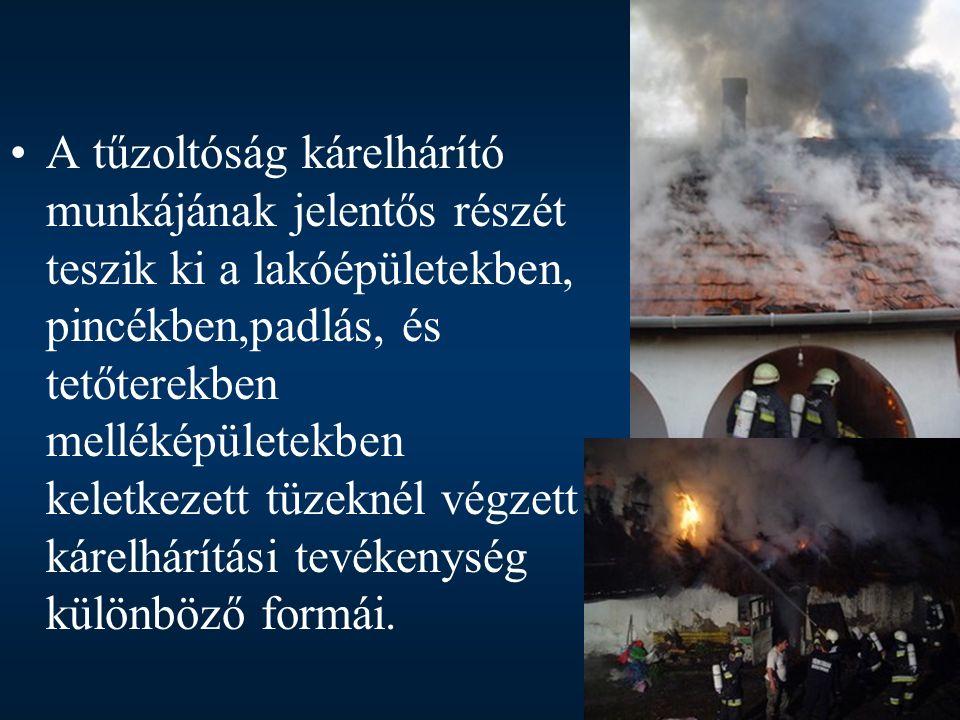 BajaTűz 2003 Okt és Szolg Bt. A tűzoltóság kárelhárító munkájának jelentős részét teszik ki a lakóépületekben, pincékben,padlás, és tetőterekben mellé
