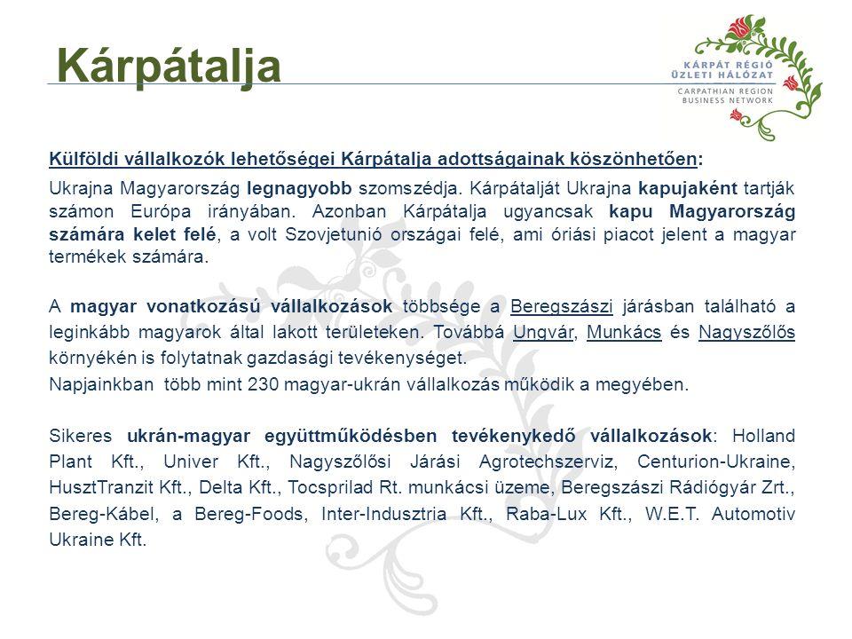 Külföldi vállalkozók lehetőségei Kárpátalja adottságainak köszönhetően: Ukrajna Magyarország legnagyobb szomszédja.