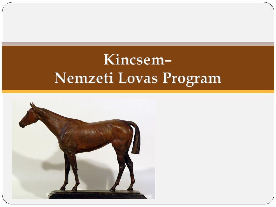 A lovaságazat összefüggései Az ágazat komplexitására való tekintettel egységes kezelése indokolt.