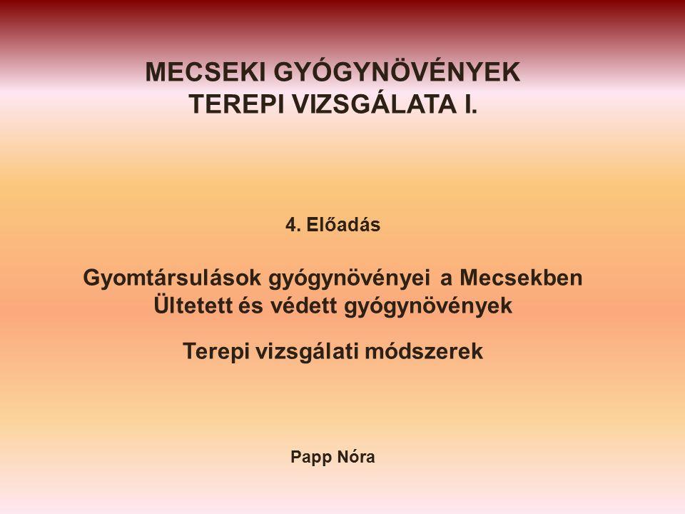 MECSEKI GYÓGYNÖVÉNYEK TEREPI VIZSGÁLATA I. 4.