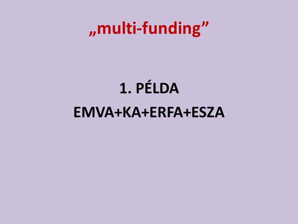 """""""multi-funding"""" 1. PÉLDA EMVA+KA+ERFA+ESZA"""