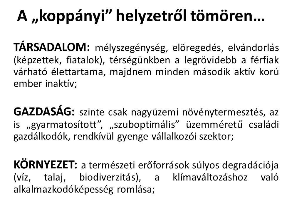 """A """"koppányi"""" helyzetről tömören… TÁRSADALOM: mélyszegénység, elöregedés, elvándorlás (képzettek, fiatalok), térségünkben a legrövidebb a férfiak várha"""