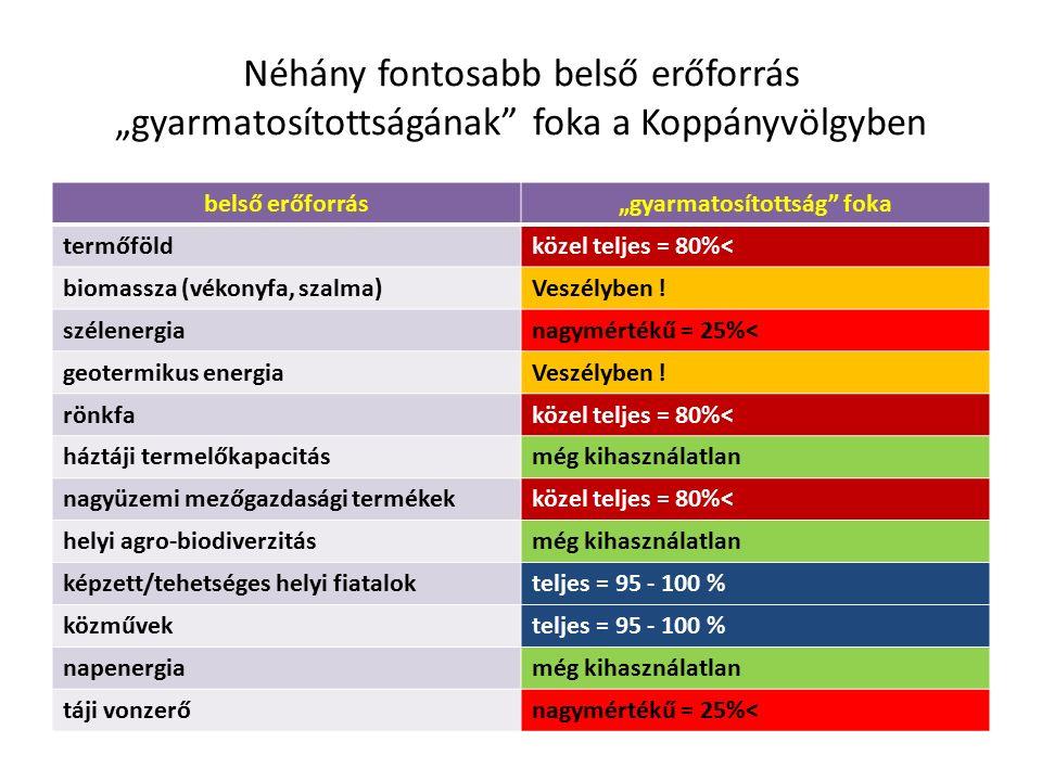 """Néhány fontosabb belső erőforrás """"gyarmatosítottságának foka a Koppányvölgyben belső erőforrás""""gyarmatosítottság foka termőföldközel teljes = 80%˂ biomassza (vékonyfa, szalma)Veszélyben ."""