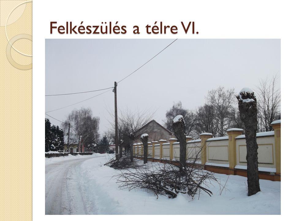 Felkészülés a télre VI.