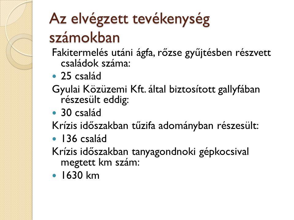 Az elvégzett tevékenység számokban Fakitermelés utáni ágfa, rőzse gyűjtésben részvett családok száma: 25 család Gyulai Közüzemi Kft.