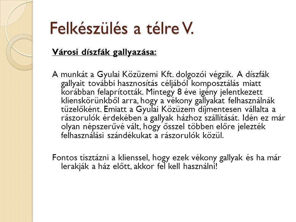 Felkészülés a télre V. Városi díszfák gallyazása: A munkát a Gyulai Közüzemi Kft.