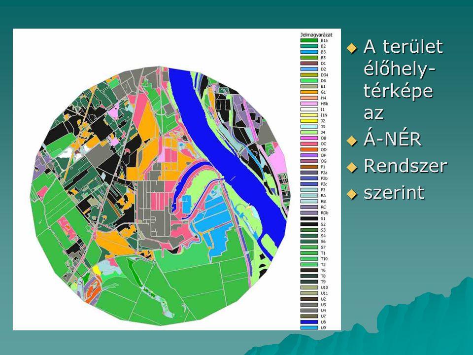  A terület élőhely- térképe az  Á-NÉR  Rendszer  szerint