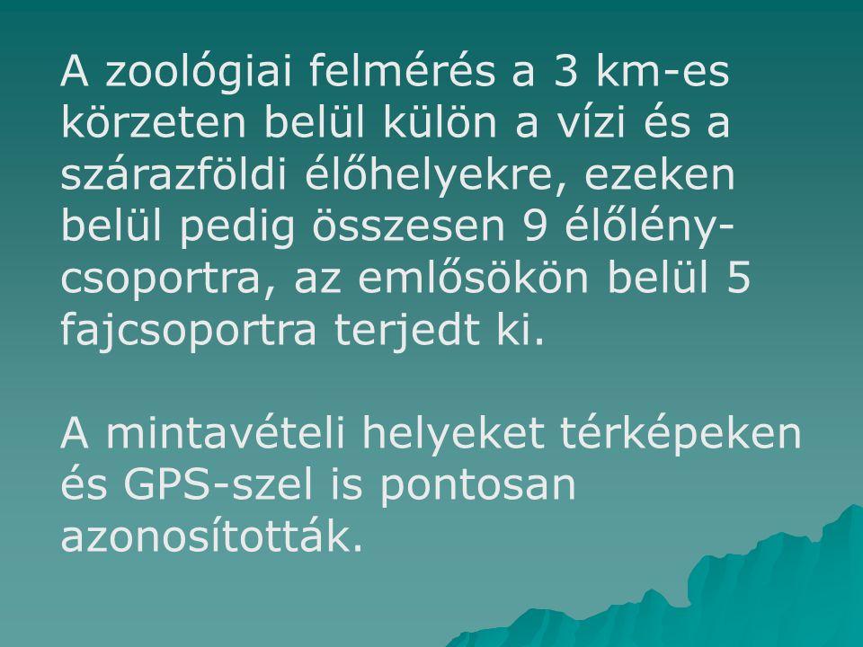 A zoológiai felmérés a 3 km-es körzeten belül külön a vízi és a szárazföldi élőhelyekre, ezeken belül pedig összesen 9 élőlény- csoportra, az emlősökön belül 5 fajcsoportra terjedt ki.