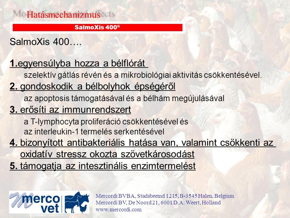 Hatásmechanizmus SalmoXis 400 ® SalmoXis 400….