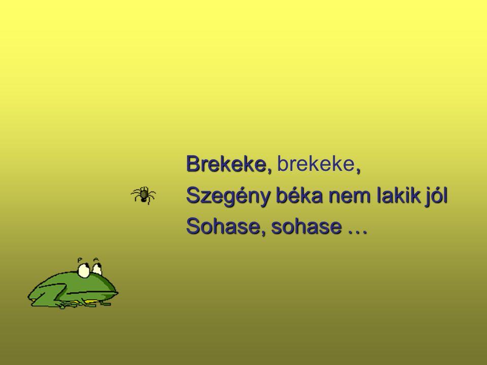 Brekeke,, Brekeke, brekeke, Szegény béka nem lakik jól Szegény béka nem lakik jól Sohase, sohase … Sohase, sohase …